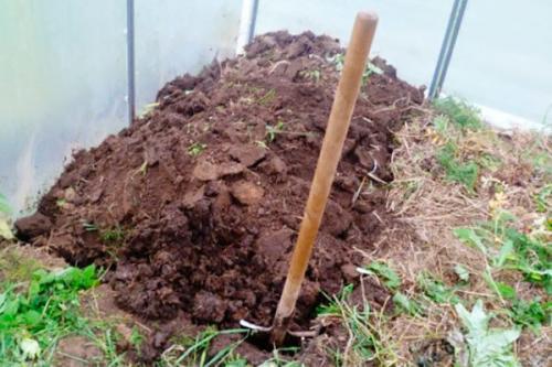 Чем дезинфицировать теплицу осенью. Как обеззаразить почву в теплице осенью
